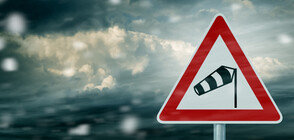 Силни ветрове причиниха щети в Западна Европа (ВИДЕО+СНИМКИ)