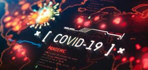 За пръв път от юли: Над 50 000 новозаразени с COVID-19 за ден на Острова