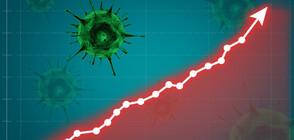 Близо 5000 новозаразени с COVID-19, броят на починалите - отново висок