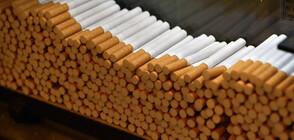"""Задържаха 318 000 къса цигари на ГКПП """"Дунав мост 2"""""""