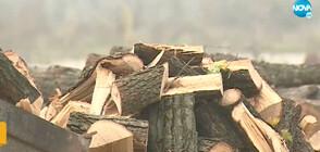 Ще има ли достатъчно дърва и пелети за отопление през зимата