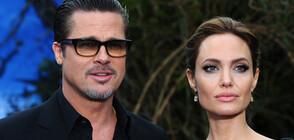 Застой в спора за попечителство между Брад Пит и Анджелина Джоли (СНИМКИ)