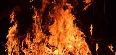 """Няма данни за пострадали при пожара в близост до двореца """"Версай"""""""