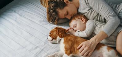 Сънят помага в битката с рака и стареенето