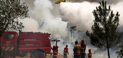 Поне 20 души са ранени при десетки горски пожари в Португалия (СНИМКИ)