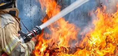 Евакуираха шест градчета на Канарските острови заради пожар