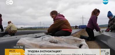 ТРУДОВА ЕКСПЛОАТАЦИЯ?: Разкази на работници от Източна Европа в Германия (ВИДЕО)