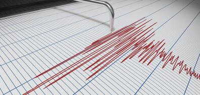 Слабо земетресение край Садово