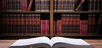 Библиотека на дърво радва шуменци (ВИДЕО)