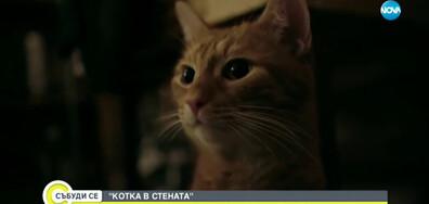 """""""КОТКА В СТЕНАТА"""": Най-новата българска копродукция вече е в кината"""