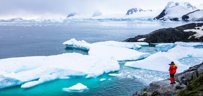 Пимпирев: Взимат се мерки срещу разпространението на COVID-19 и на Антарктида