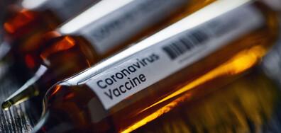 Путин: Регистрирахме първата ваксина срещу COVID-19, вече е поставена и на дъщеря ми