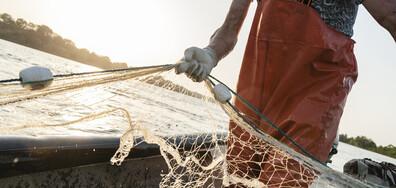 Рибарите очакват богат улов тази година (ВИДЕО)