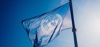 ООН: Световната миграция е намаляла с почти 30% през последната година