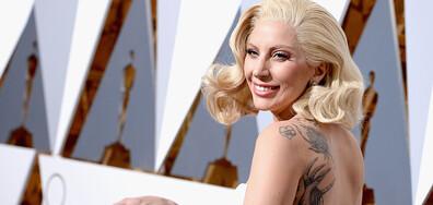 Откраднаха две от кучетата на Лейди Гага (СНИМКИ+ВИДЕО)