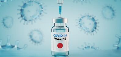 Япония облекчава мерките, ще издава ваксинационни паспорти