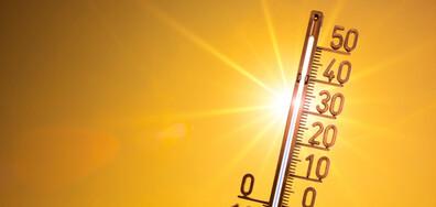 ЕКСТРЕМНИ ГОРЕЩИНИ: Живакът скача до 41 градуса