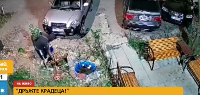 """""""ДРЪЖТЕ КРАДЕЦА"""": Мъж задигна украса пред вход на блок (ВИДЕО)"""