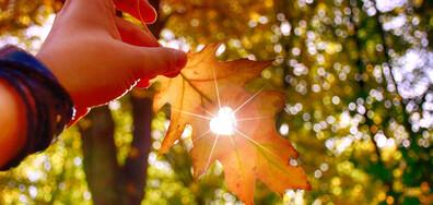 Климатолог: Очаква се захлаждане, есента настъпва