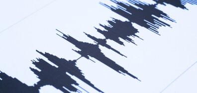 СЛЕД ИЗРИГВАНИЯТА НА ВУЛКАНА: Силно земетресение на остров Ла Палма (ВИДЕО+СНИМКИ)