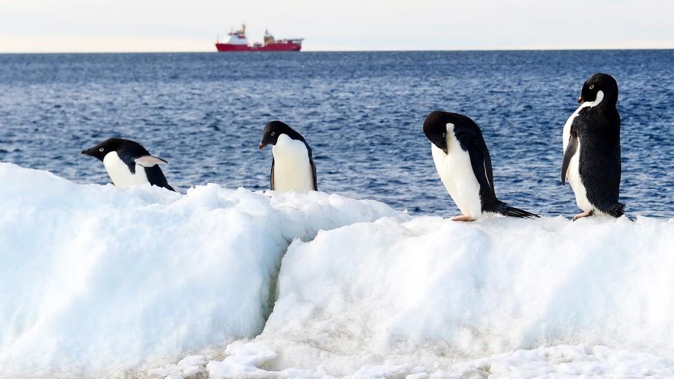"""Записаха """"песента"""" на ледниците в Антарктида (ВИДЕО)"""