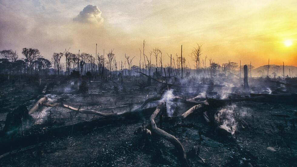 Премина ли опасността от пожара в Сакар