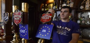 ПРЕДИ BREXIT: Нищожна разлика между евроскептици и еврооптимисти