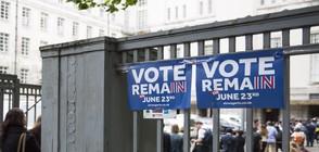 Британците решават бъдещето на страната си