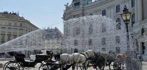 Във Виена файтони доставят храна по домовете