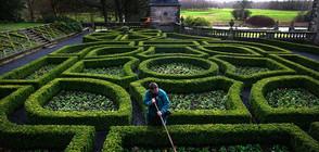 Най-красивите лабиринти в света (СНИМКИ)
