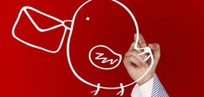 Сарказъм и ирония в социалните мрежи в деня на балотажа