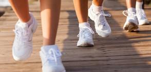 ЗА ДОБРО ЗДРАВЕ: Ходете поне по 3 км всеки ден