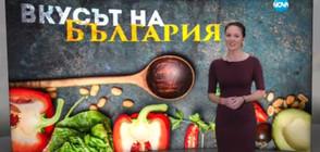 """""""Темата на NOVA"""": Пазителите на старите български рецепти"""