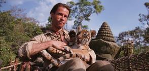 Приключенски кино следобед с шимпанзе, тигри и Гай Пиърс по NOVA