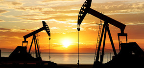 Цената на петрола започна да пада
