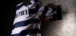 Великобритания няма да пуска в страната европейци, лежали в затвора над година