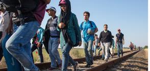 Темата на NOVA: Говорят трафикантите на хора