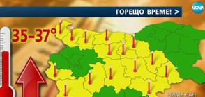 Жълт код за опасни горещини в 14 области в страната