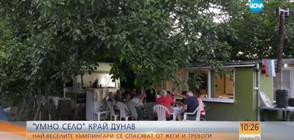 """""""Умно село"""" край Дунав: Жители на Лом се спасяват от жеги и тревоги"""