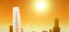ОПАСНО ТОПЛО: Оранжев код заради жегите в 17 области