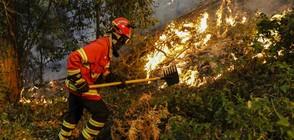 Големи пожари обхванаха Северна Испания