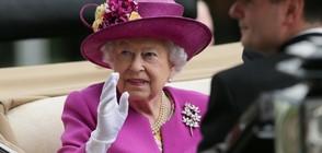 Британската кралица скътала милиони в офшорки