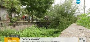 """От """"Моята новина"""": В Монтанско се притесняват от непочистено речно корито (ВИДЕО)"""