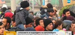 Политологът Иван Кръстев: Проблемът с второто поколение бежанци е ключов