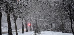 ЗИМАТА СЕ ЗАВРЪЩА: Сняг и студен вятър през уикенда