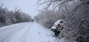 ЗИМАТА ИДВА: Къде ще вали най-много сняг?