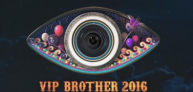 Зрителите избират любимата си звезда във VIP Brother