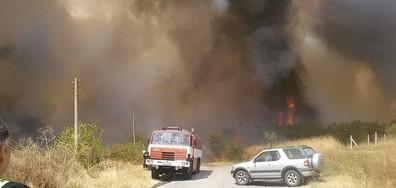 Край на бедственото положение в Гълъбово: Огънят на метри от къщите