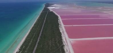 От високо: Розовата лагуна в Мексико – като на друга планета (ВИДЕО)