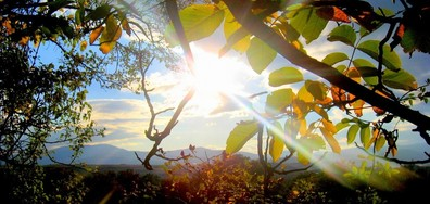 Очаква ли ни лято през почивните дни и кога идва есента? (ГАЛЕРИЯ)